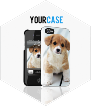 Your Case1